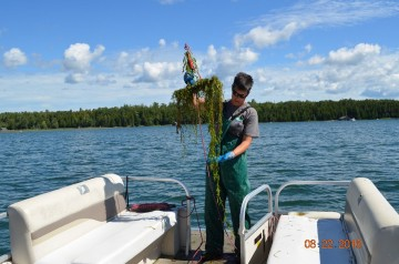 2016 GLRI Grant - Aquatic Vegetation Survey_25